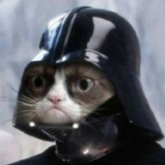 111136-photo-crop-p04628ef3fdc4083905e2cc262fa9cecf-chat-star-wars-dark-vador